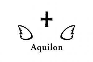 AquilonLogoBlack460-300